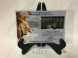 Chronicles of Narnia Movie Used Crossbow Set