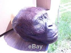 Stan Winston Studios Amy Gorilla Congo silicone head bust prop