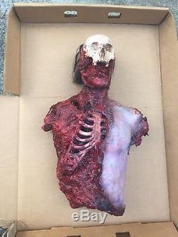Stranger Things Scren Used Body With COA