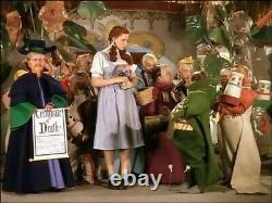 The Wizard of Oz Movie Film Prop Production item Memorabilia Collectible A1